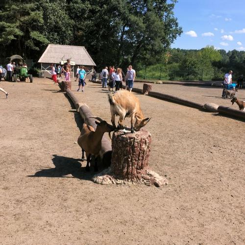 Serengeti Park Hodenhagen2